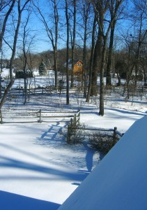 new snow----again! ©booksandbuttons