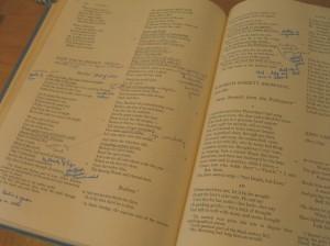 my old lit book©booksandbuttons