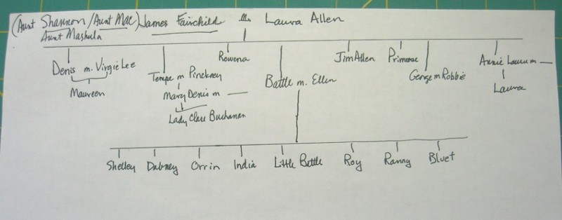 (my) family tree for Delta Wedding by Eudora Welty©booksandbuttons
