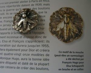 insect button Francois Hugo