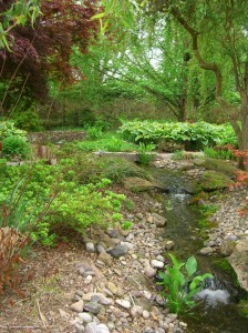 bubbling streams at Paxson Hill Farm, richly landscaped ©booksandbuttons