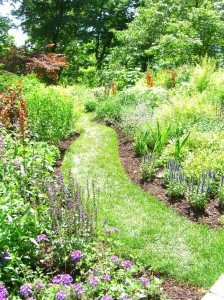a no-brainer--look how a simple GRASS path makes a difference!
