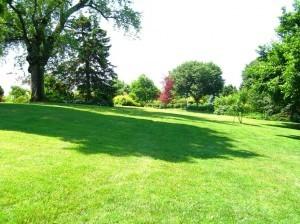 conservancy garden tour 6-28-14 060