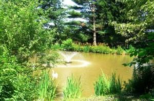 conservancy garden tour 6-28-14 061